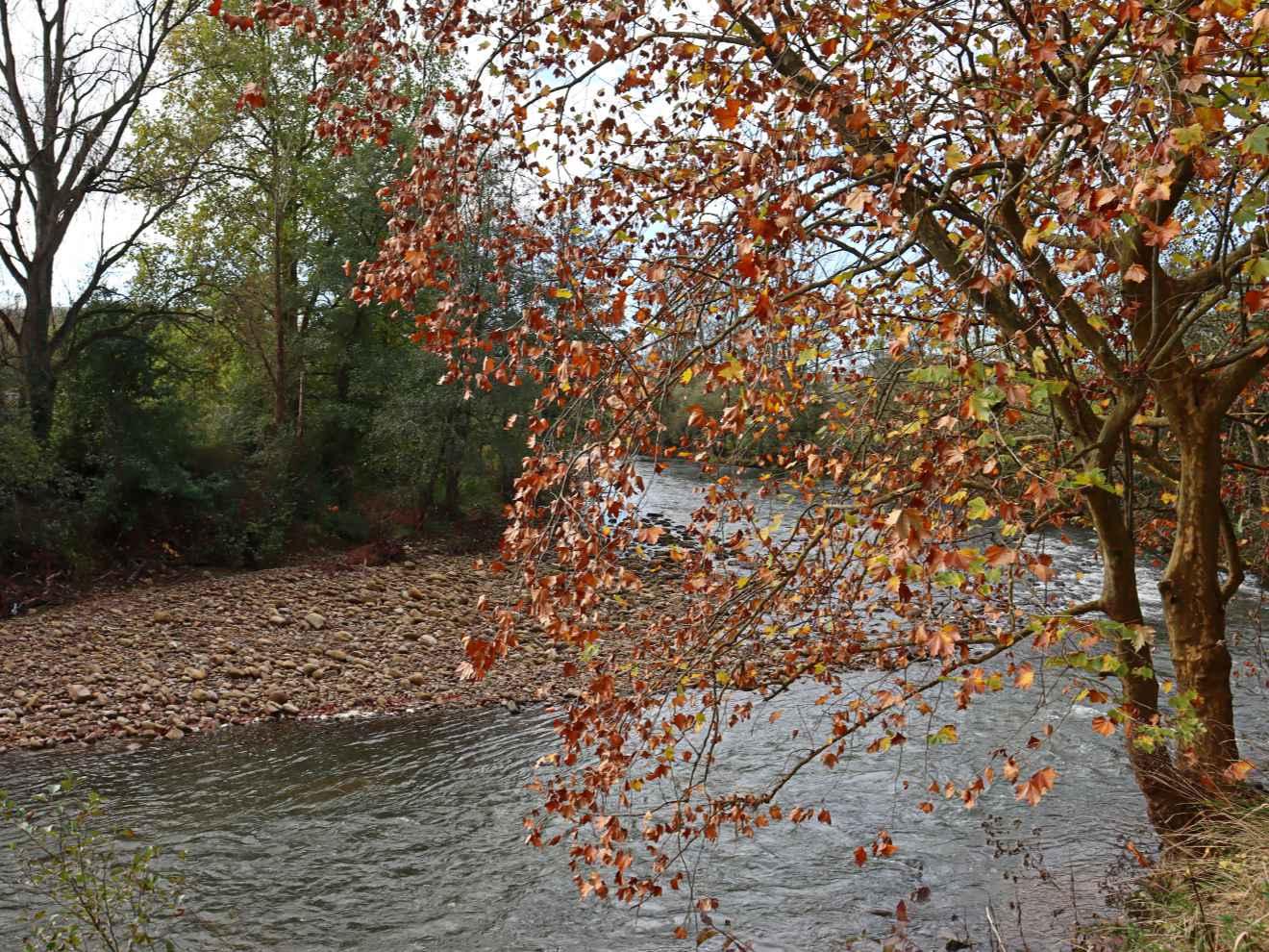 Río Saja por Casar de Periedo