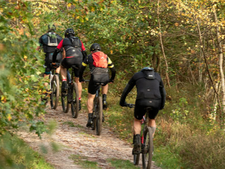 Ciclistas por un camino