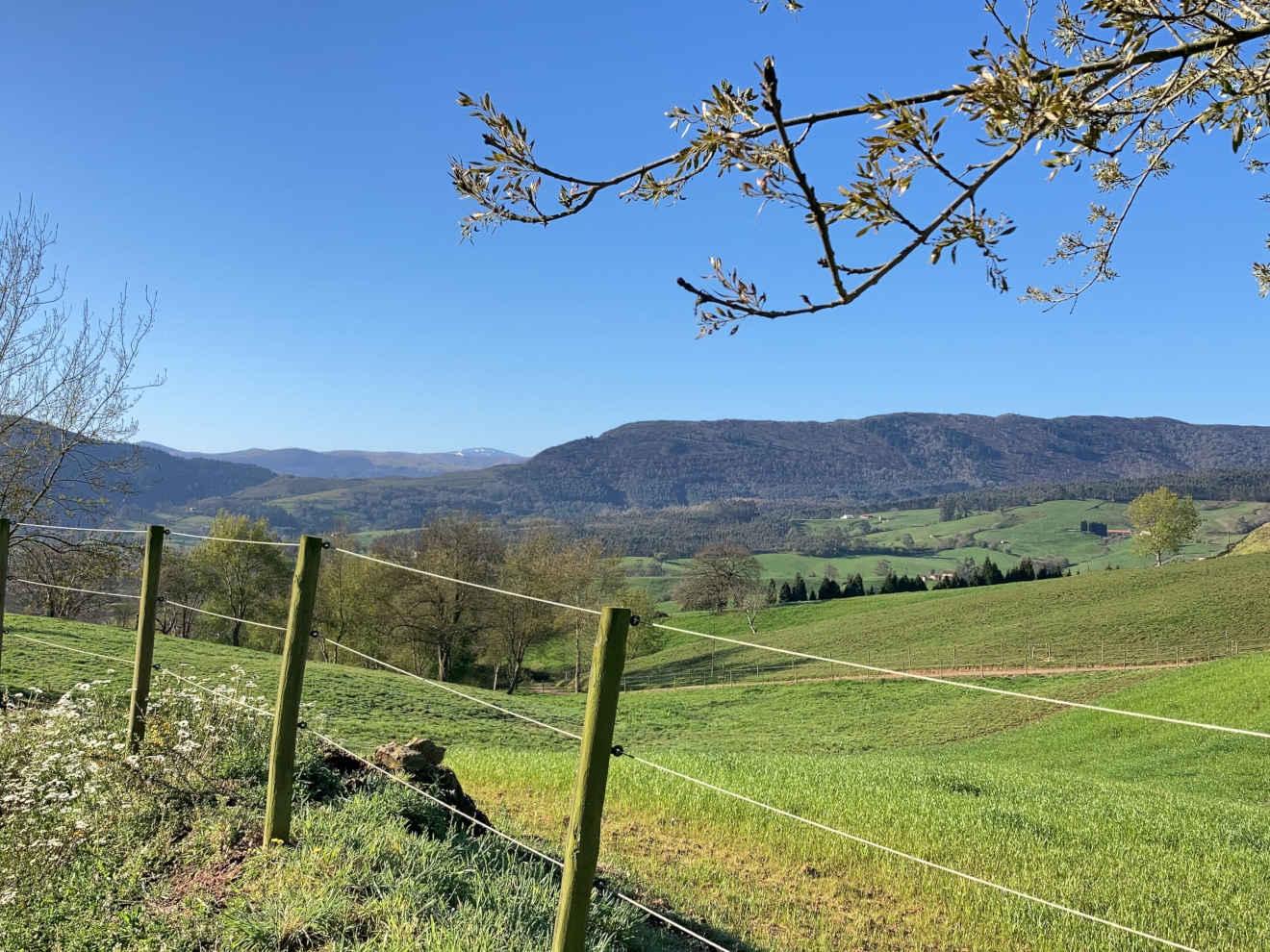 Ruta de la Fuentanuca