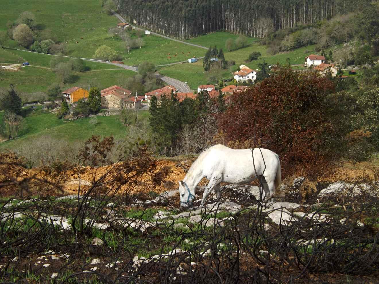 Vista desde la ruta de Las Minas