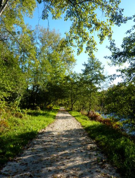 Camino bordeando el río Saja