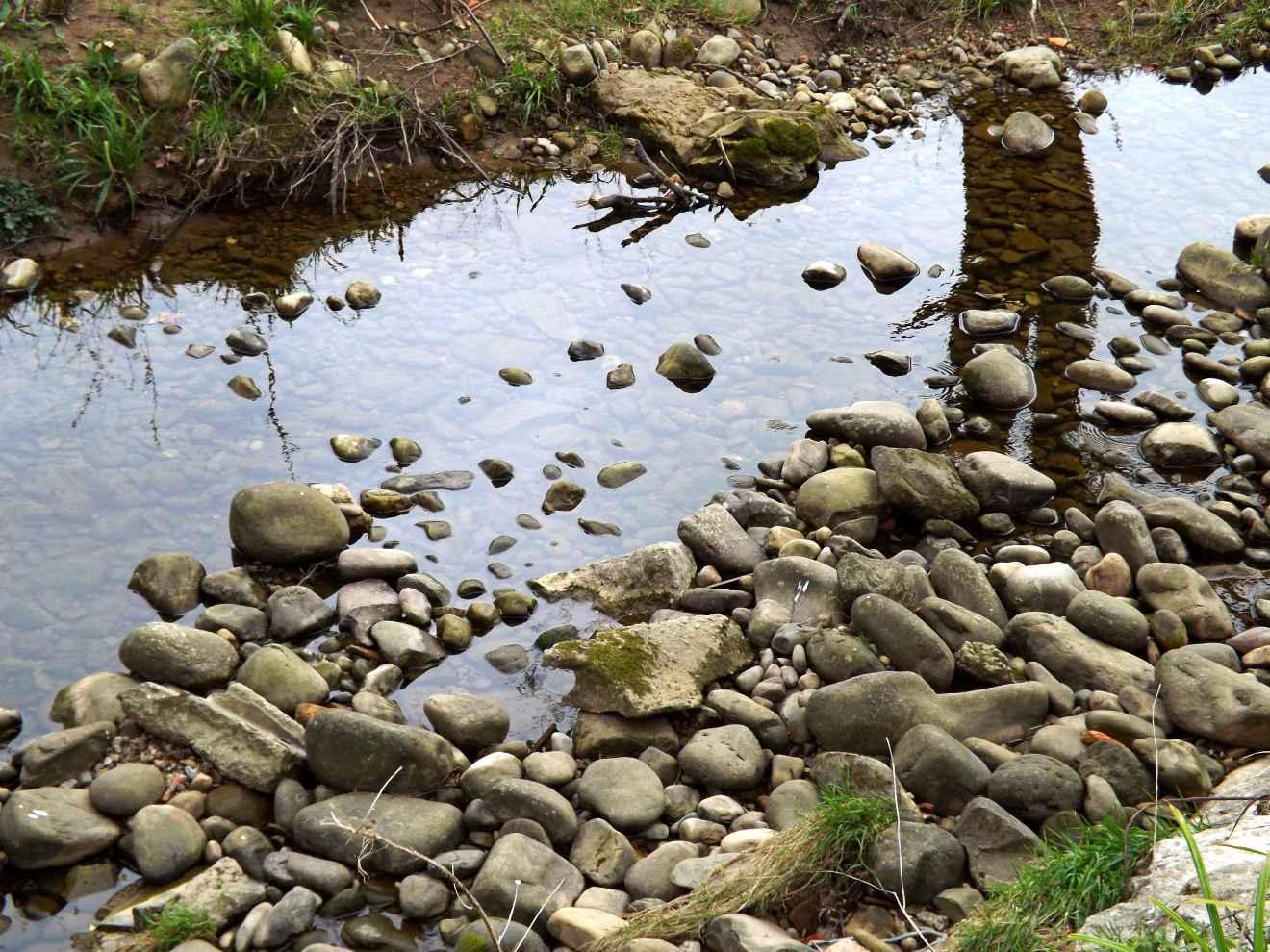Río Saja en Periedo